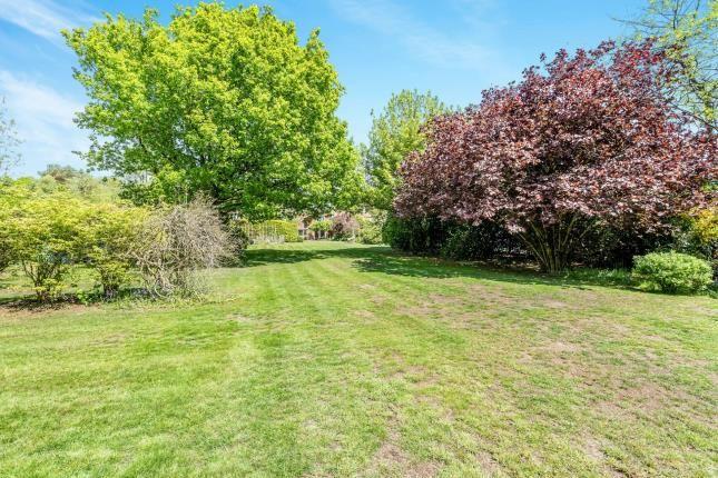 Garden of Minsted, Midhurst, West Sussex, . GU29