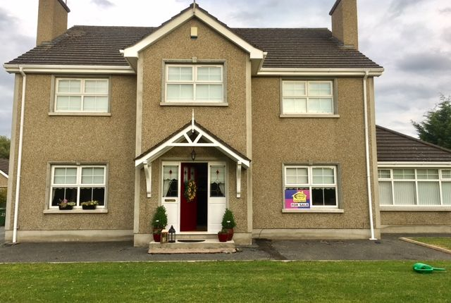 Thumbnail Detached house for sale in Derrytrasna Road, Lurgan