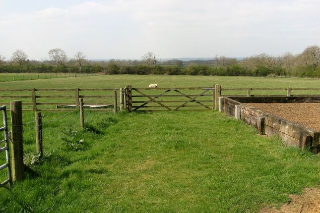 Thumbnail Equestrian property for sale in Winslow Road, Nash, Milton Keynes