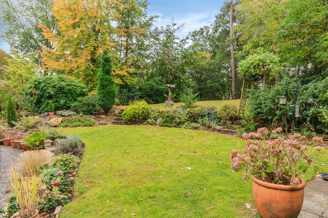 Garden of Douglas Grove, Lower Bourne, Farnham GU10
