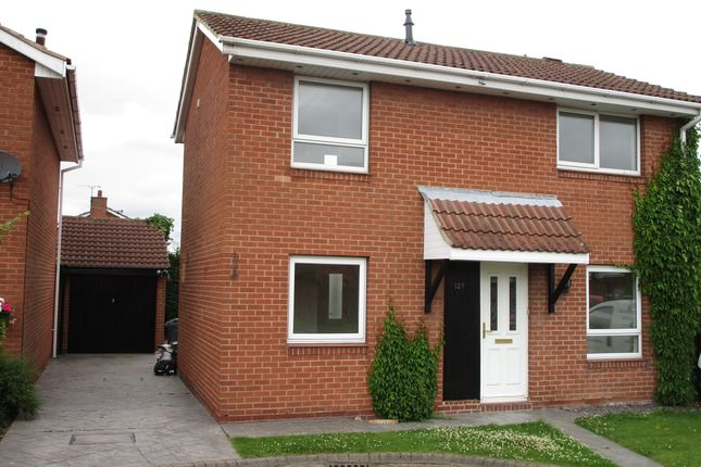 Thumbnail Detached house to rent in Belvedere Parade, Bramley, Rotherham