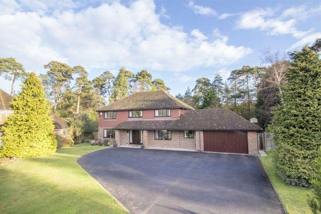 Thumbnail Detached house for sale in Kestrel Close, Ewshot, Farnham