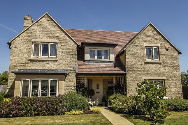 Thumbnail Detached house for sale in Great Dunns Close, Beckington