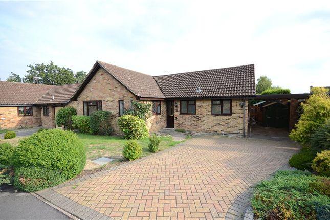 Thumbnail Detached bungalow for sale in Templar Close, Sandhurst, Berkshire