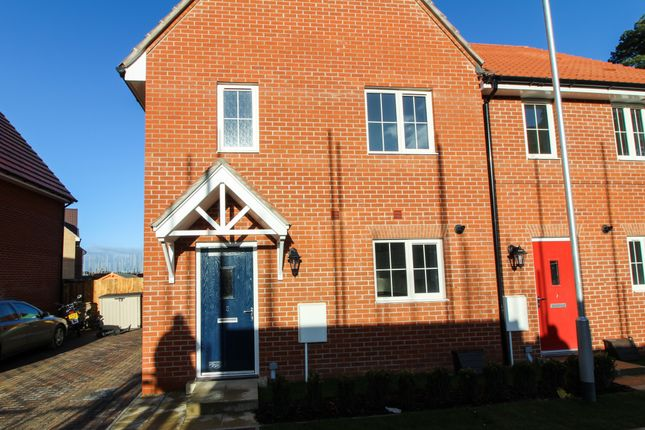 Thumbnail Semi-detached house for sale in Hyacinth Drive, Red Lodge, Bury St. Edmunds