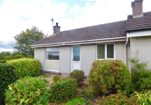 Thumbnail Bungalow to rent in Redhall View, Templand, Lockerbie