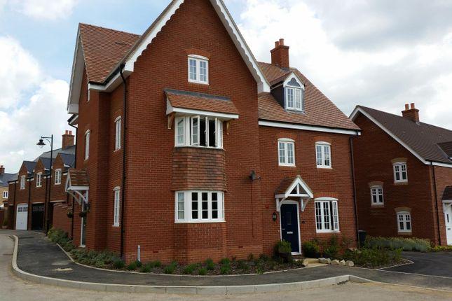 Thumbnail Semi-detached house to rent in Downham Close, Great Denham, Bedford