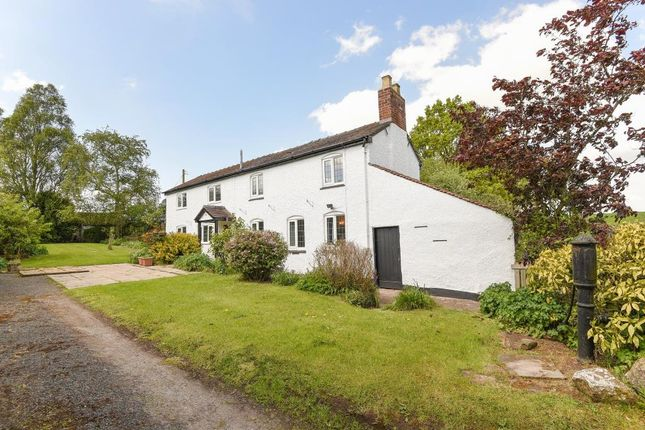 Thumbnail Cottage for sale in Dilwyn, Herefordshire