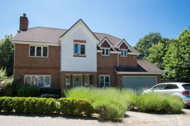 Thumbnail Detached house to rent in Milestones, Holt Lane, Wokingham, Berkshire