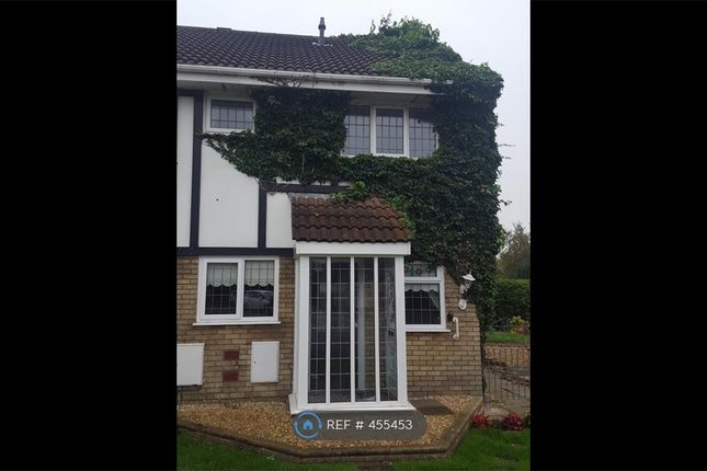 Thumbnail Semi-detached house to rent in Lavender Court, Brackla, Bridgend