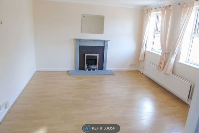 Thumbnail Flat to rent in Crowley Villas, Swalwell, Tyne And Wear