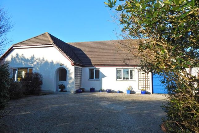 Thumbnail Detached bungalow for sale in The Links, Pengersick Lane, Praa Sands, Penzance