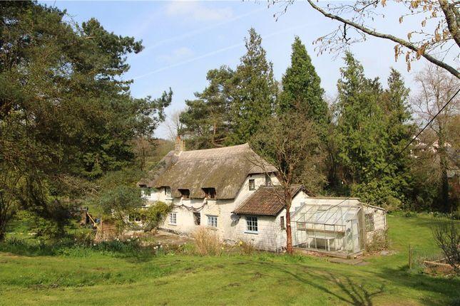 Thumbnail Property to rent in Kilmington, Axminster, Devon