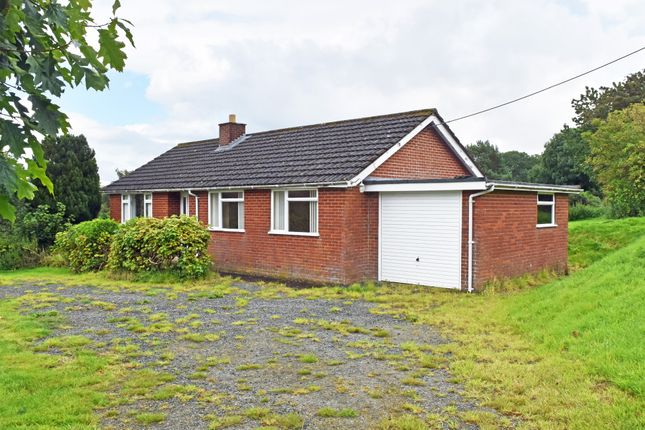 Thumbnail Detached bungalow to rent in Cefnllys, Llandrindod Wells