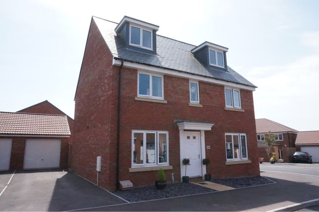 Thumbnail Detached house for sale in Dragon Rise, Taunton