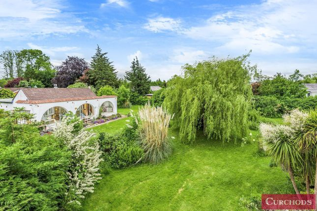 Thumbnail Detached bungalow for sale in Towpath, Shepperton