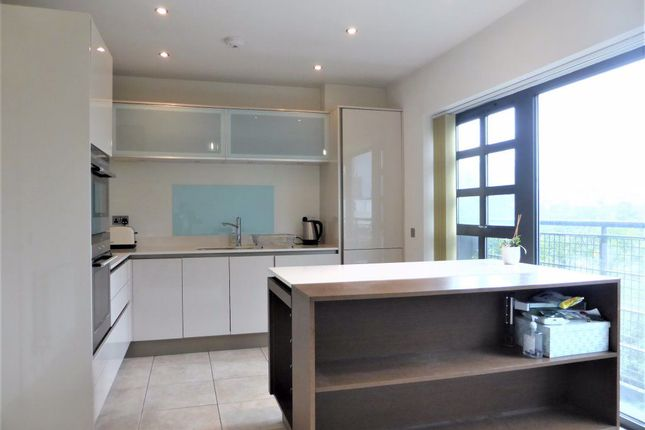 Thumbnail Property to rent in Stroudley Road, Brighton