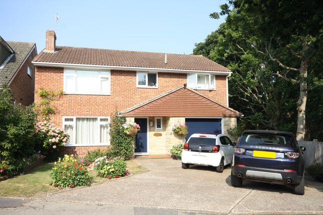 Thumbnail Detached house for sale in Buckholt Avenue, Bexhill-On-Sea