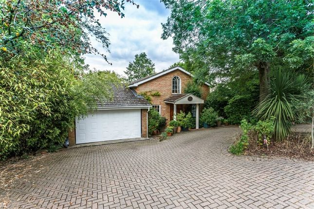 Thumbnail Detached house for sale in St Leonards Hill, Windsor, Berkshire