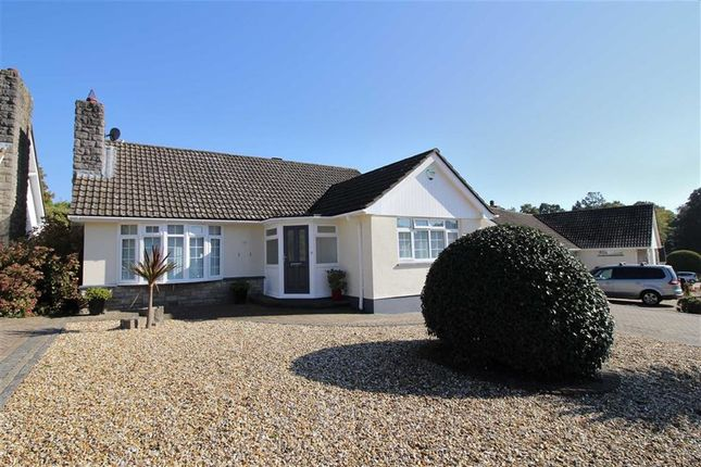 Thumbnail Detached bungalow for sale in Greenways, Highcliffe, Christchurch