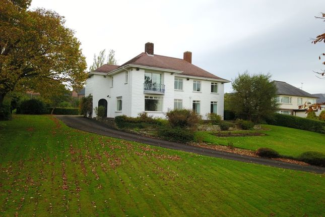 Thumbnail Detached house for sale in Shore Road, Newtownabbey