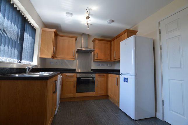 Thumbnail Semi-detached house to rent in Avenue Road Extension, Clarendon Park