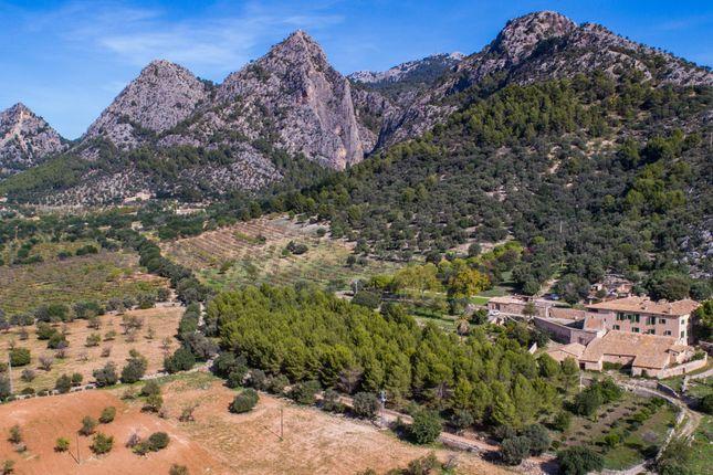 Thumbnail Villa for sale in Puigpunyent Countryside, Mallorca, Balearic Islands