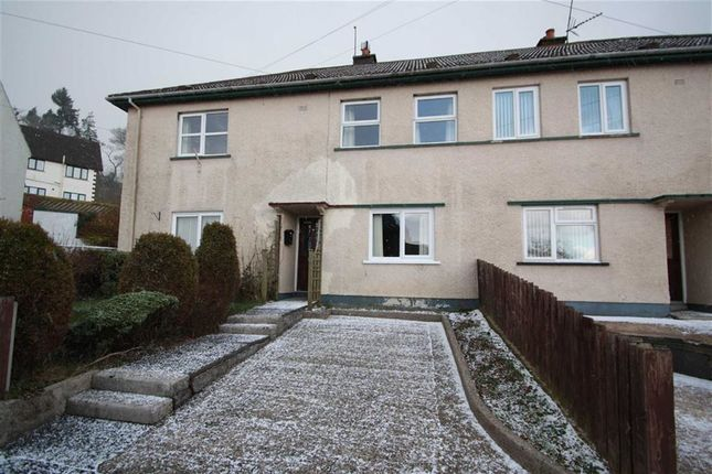Thumbnail Flat to rent in Croob Park, Ballynahinch, Down