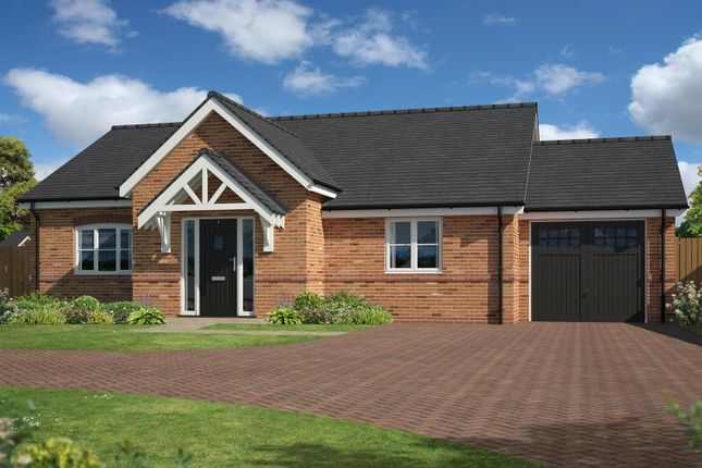 Thumbnail Detached bungalow for sale in Glenatina Gardens, Little Green View, Ash Green