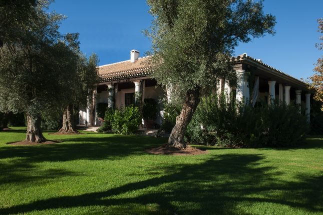 Thumbnail Equestrian property for sale in Castillblanco De Los Arroyos, Sevilla, Spain