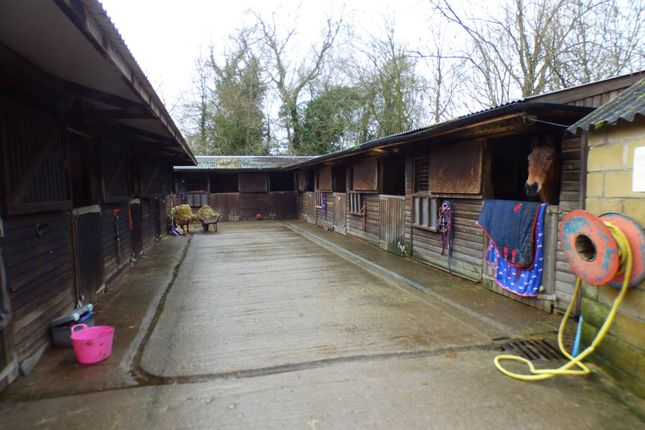 Stables of Foghamshire Lane, Trudoxhill, Nr Frome BA11