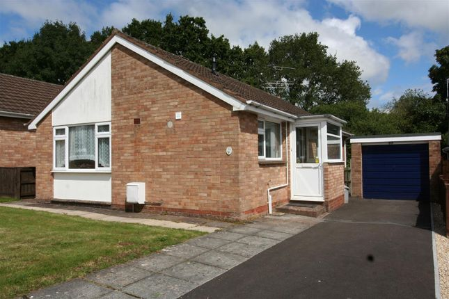 Thumbnail Detached bungalow to rent in Pinnex Moor Road, Tiverton