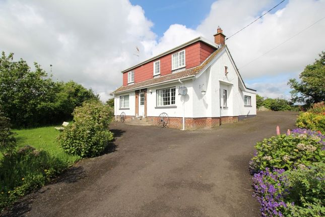 Thumbnail Detached house for sale in New Line, Donaghadee