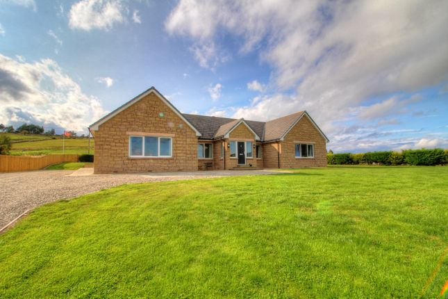 Thumbnail Bungalow for sale in Grange, Keith
