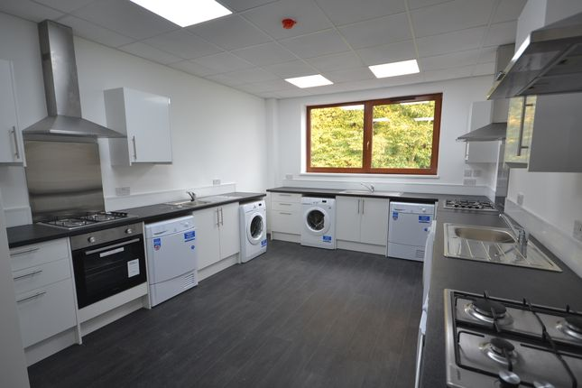 Thumbnail Studio to rent in Lower Bryan Street, Hanley, Stoke-On-Trent