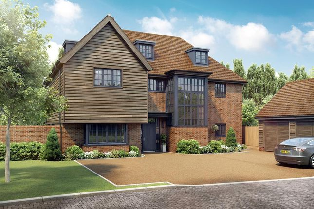 Thumbnail Detached house for sale in The Sunflower, Radstone Gate, Thorn Lane, Stelling Minnis