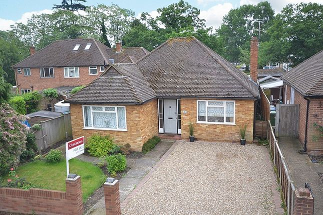 Thumbnail Detached bungalow for sale in Katherine Close, Addlestone