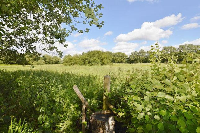 Photo 15 of Hookley Lane, Elstead, Godalming GU8