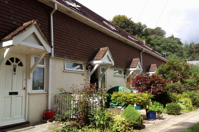 Thumbnail Terraced house to rent in Fernhill Heights, Charmouth, Bridport, Dorset