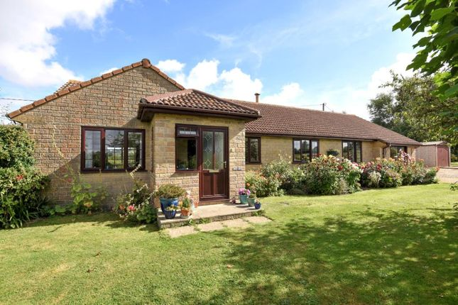 Thumbnail Detached bungalow for sale in Woodhouse Lane, Rimpton, Yeovil, Somerset