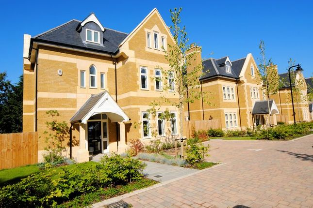 Thumbnail Detached house to rent in Havanna Drive, London