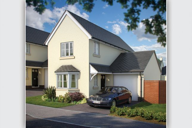 "Thumbnail Detached house for sale in ""The Cofton"" at Roscoff Road, Dawlish"