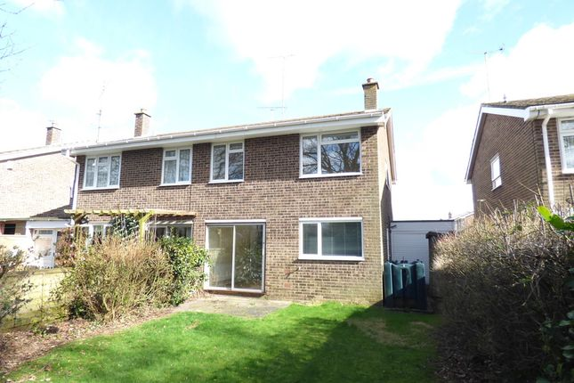 Thumbnail Semi-detached house to rent in Keelers Way, Great Horkesley, Colchester
