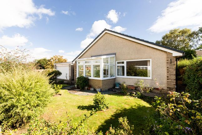 Thumbnail Detached bungalow for sale in 2 Crofts Way, Corbridge, Northumberland