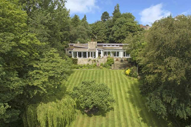 Thumbnail Detached bungalow for sale in Fulwith Road, Harrogate