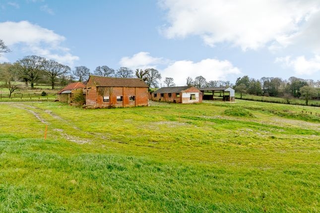 Thumbnail Detached house for sale in Broadhembury, Honiton