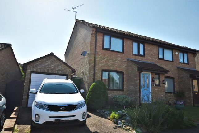 Thumbnail Semi-detached house to rent in Luttrell Close, Taunton, Somerset