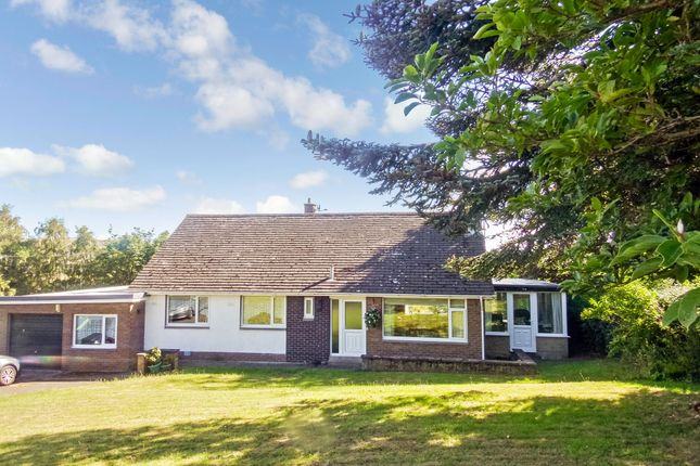 Thumbnail Bungalow for sale in Victoria Road, Wooler