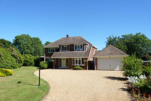 Thumbnail Detached house to rent in Alton Lane, Four Marks, Alton