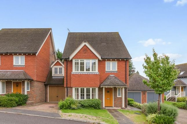 Thumbnail Detached house to rent in Spring Meadow, Uckfield